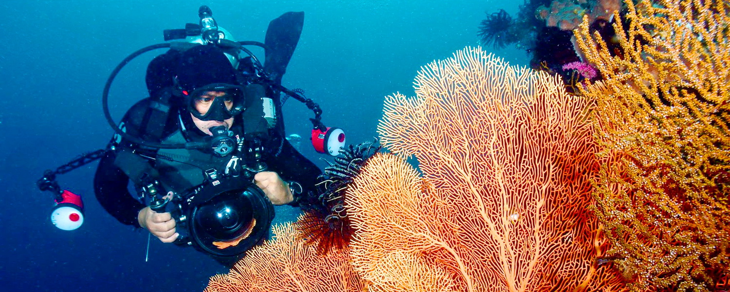 Underwater photography cebu fun divers underwater photography publicscrutiny Image collections